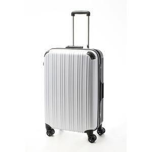 ツートンカラー スーツケース/キャリーバッグ 【Lサイズ カーボンホワイト/ブラック】 72L 『アクタス』 - 拡大画像