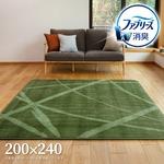ファブリーズW消臭機能付き ふっくらラグ ディクト 約200×240cm グリーン