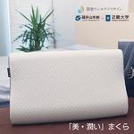 シルクコラーゲン加工 美・潤いまくら 低反発+高反発タイプ 高さ調整 枕/まくら 【 美・潤い SILCOLLA】