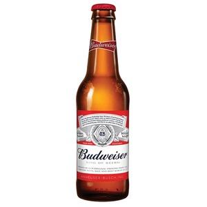 【海外ビール】バドワイザー 355ml 瓶 1ケース(24本入り) - 拡大画像