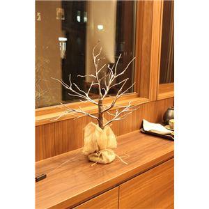 ブランチツリー 60cm ウッドスノー - 拡大画像