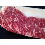 北海道産牛サーロインブロック1kg