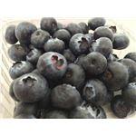 ブルーべリー 130g/pc
