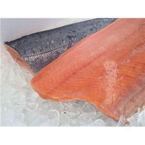 秋鮭フィーレ 10kg/pc cs 冷凍 生