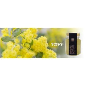 北海道山奥の蜂蜜アカシア 1個