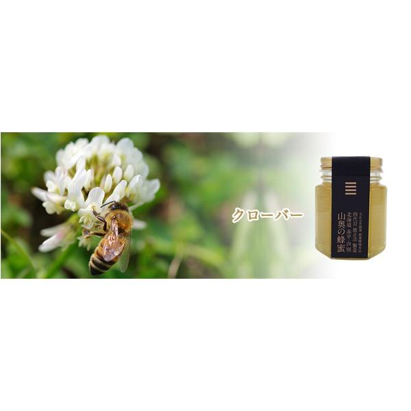 北海道山奥の蜂蜜クローバー 1個