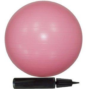 【10個セット】エクササイズボール 55cm ピンク - 拡大画像