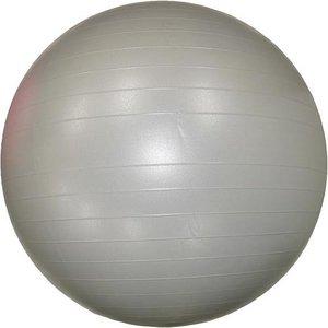 【8個セット】エクササイズボール 75cm シルバー - 拡大画像