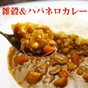 雑穀ハバネロカレー 10食セット - 拡大画像
