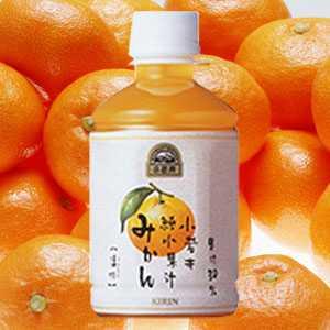 【賞味期限10月17日】小岩井純水果汁みかん280mlPET48本入り - 拡大画像