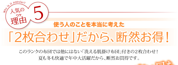 布団10点セット ダブル【和タイプ】モカブラ...の説明画像19