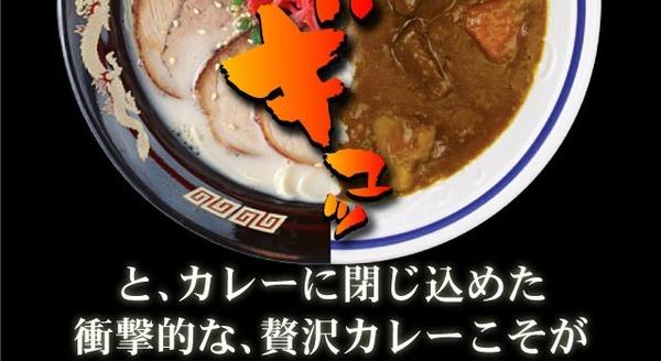 博多とんこつバカカカレー10食セット