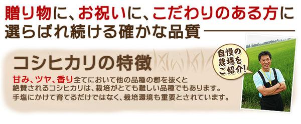 【平成28年産】 澤田農場の新潟県上越産コシヒ...の説明画像2