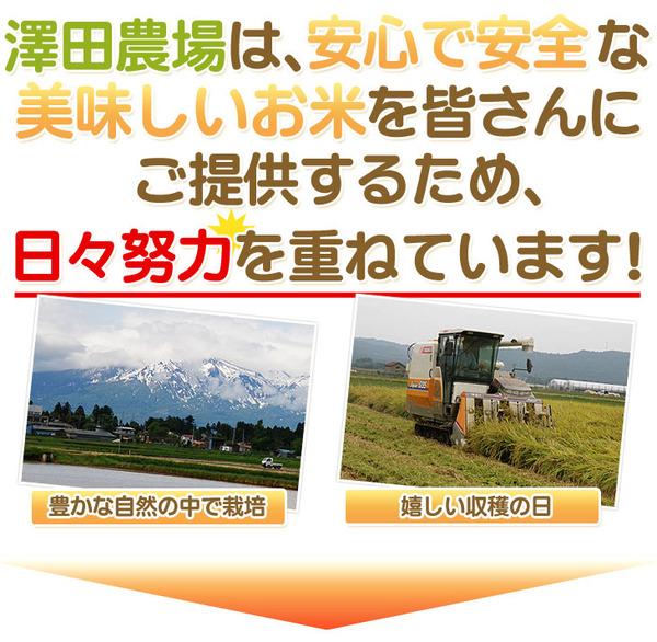 【平成28年産】 澤田農場の新潟県上越産コシヒ...の説明画像3