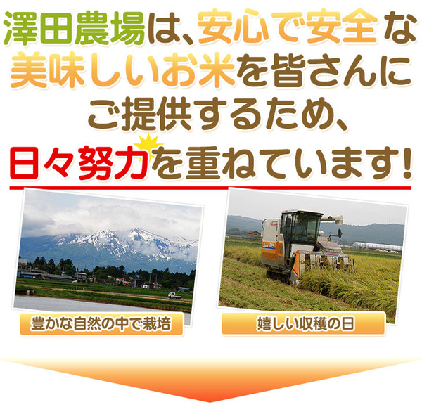 【平成28年産】 澤田農場の新潟県上越産ミルキ...の説明画像5