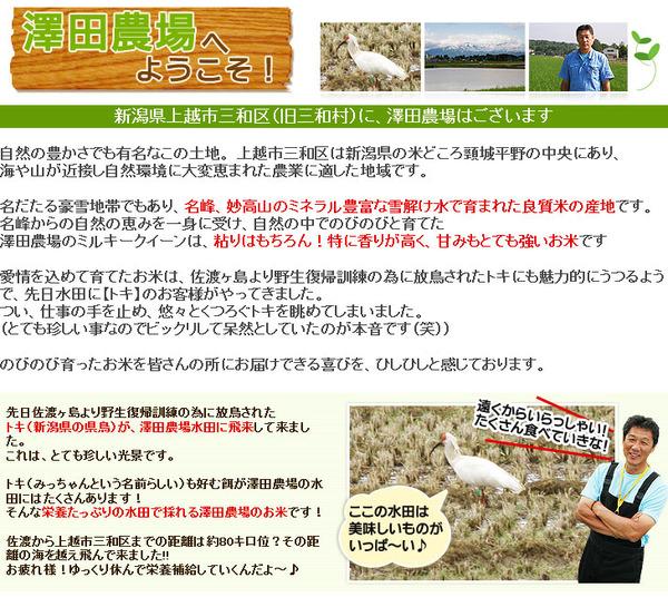 【平成28年産】 澤田農場の新潟県上越産ミルキ...の説明画像6