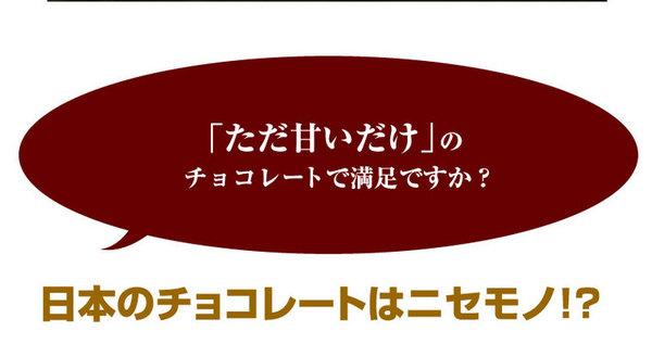 割れチョコ ミルク 800g 【クーベルチュー...の説明画像4