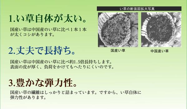 おすすめ!純国産/日本製 袋四重織い草カーペット『DX雲龍』画像07
