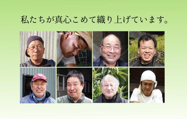 おすすめ!純国産/日本製 袋四重織い草カーペット『DX雲龍』画像08