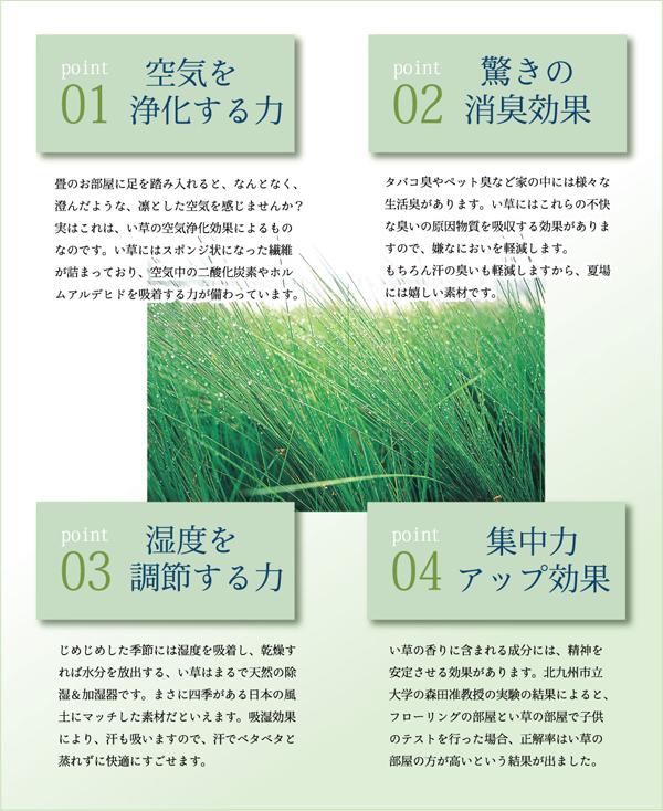 おすすめ!純国産/日本製 袋四重織い草カーペット『DX雲龍』画像19
