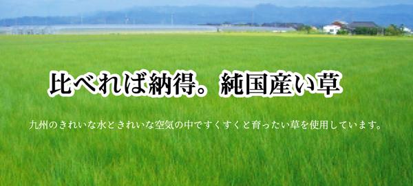 おすすめ!純国産/日本製 袋五重織い草マット ひんやり敷きパット『華紋草』約88×150cm(裏:不織布)画像06