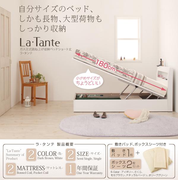 収納ベッド セミシングル【La・Tante】【...の説明画像1