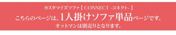 カスタマイズ【connect コネクト】