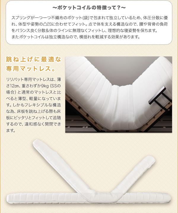 すのこベッド 跳ね上げ式大容量収納ベッド【Lilliput 】リリパット画像12