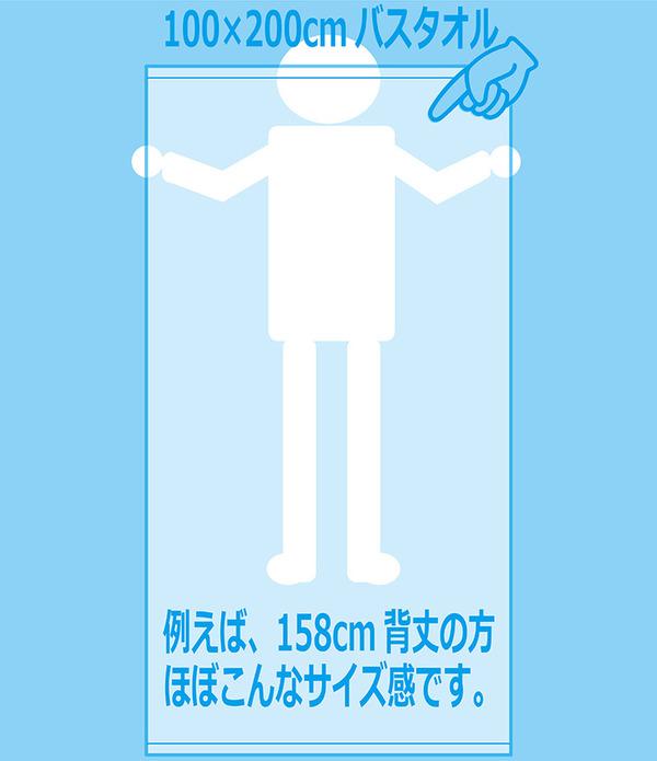 業務用 超大判バスタオル (レピアグレー 12枚セット) 100cm×200cm 綿100% 2000匁 レピア織 〔美容院 整骨院〕 の商品説明