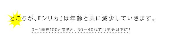 霧島湧水 天然シリカ水 500ml×48本(2...の説明画像7