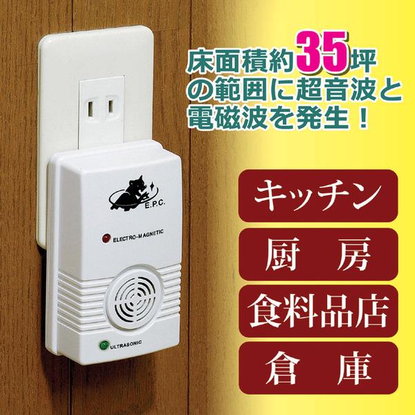 超音波ネズミ駆除器(撃退器) (キッチン/厨房/食料品店/倉庫)