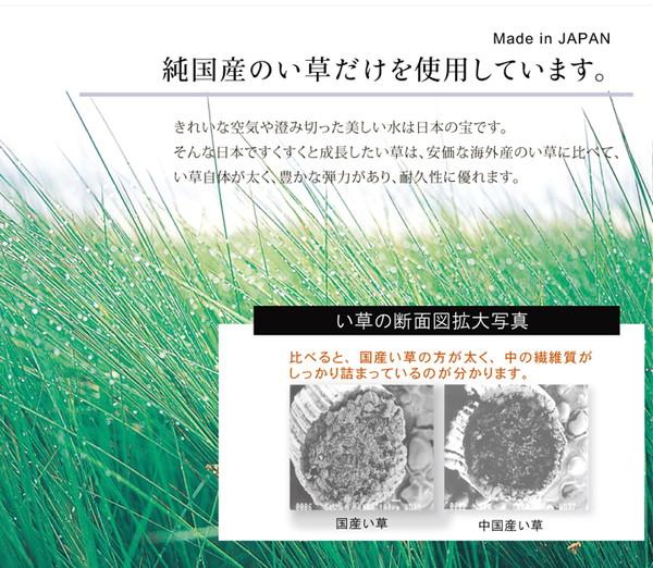 おすすめ!純国産 い草ラグカーペット『虎』約191×250cm 3畳画像02