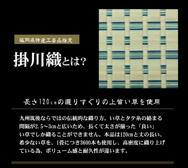 おすすめ!モダンデザイン 掛川織 い草カーペット『雲仙』画像02
