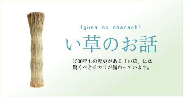 おすすめ!モダンデザイン 掛川織 い草カーペット『雲仙』画像16