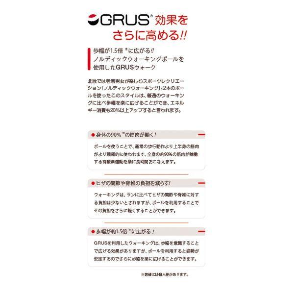 GRUS(グルス) 歩数計 認知症予防 歩幅計測 心拍計測 ホワイト GRS002-01