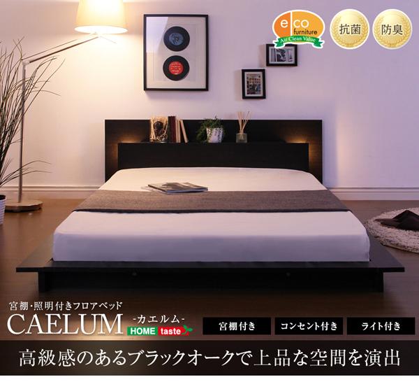 『CAELUM』 照明/コンセント/宮付き