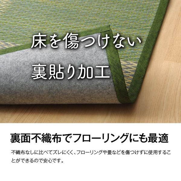 江戸間サイズ い草ラグ 画像