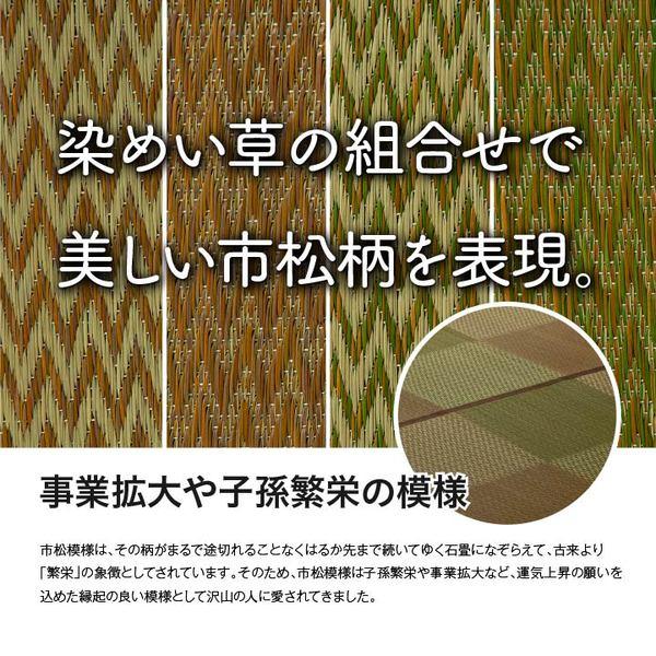 い草ラグ 市松柄「DXピーア」 画像