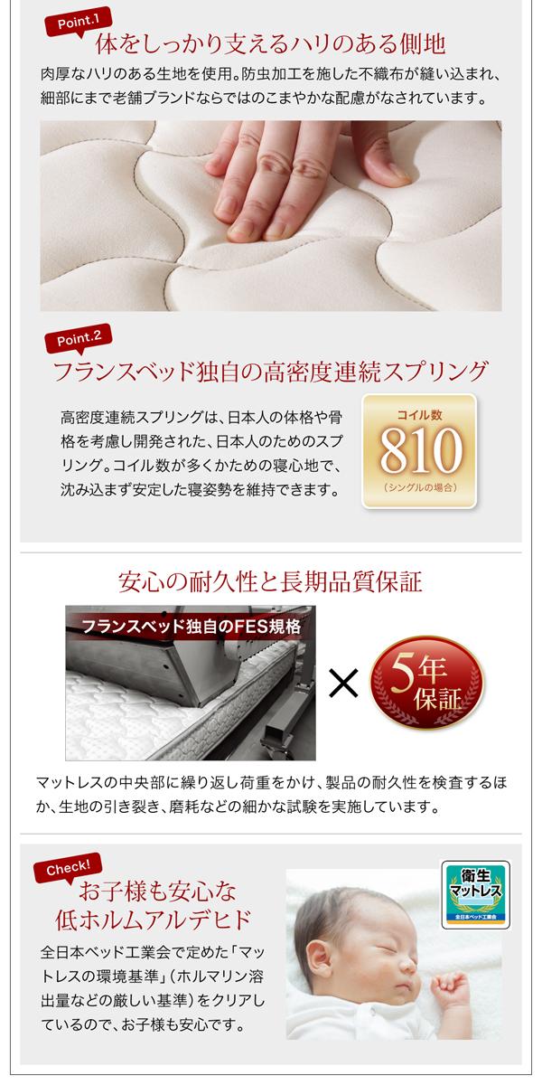 棚・コンンセント大型モダンデザイン収納ベッド【Deric】デリック