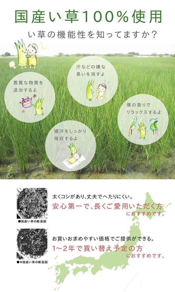 おすすめ!モダン ふっくら い草 ラグマット/絨毯 日本製 抗菌 防臭 調湿 裏面ウレタン『F市松和紋』画像04