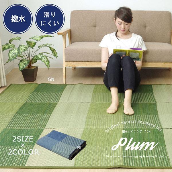 おすすめ!い草 ラグマット/絨毯 シンプル 格子柄 撥水 防滑 抗菌 防臭 消臭 調湿『NSプラム』