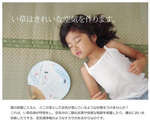 おすすめ!フリーカット い草 上敷き カーペット『F不知火』(裏:ウレタン張り)画像09