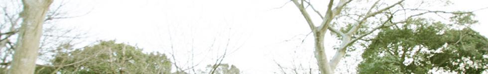 暑さ対策・熱中症対策と節電に空調服 ポリエステル製長袖ブルゾン通販